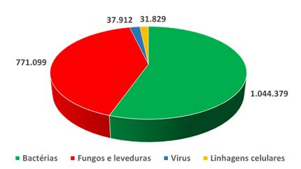 Distribuição dos microrganismos preservados em 704 coleções de culturas em todo mundo
